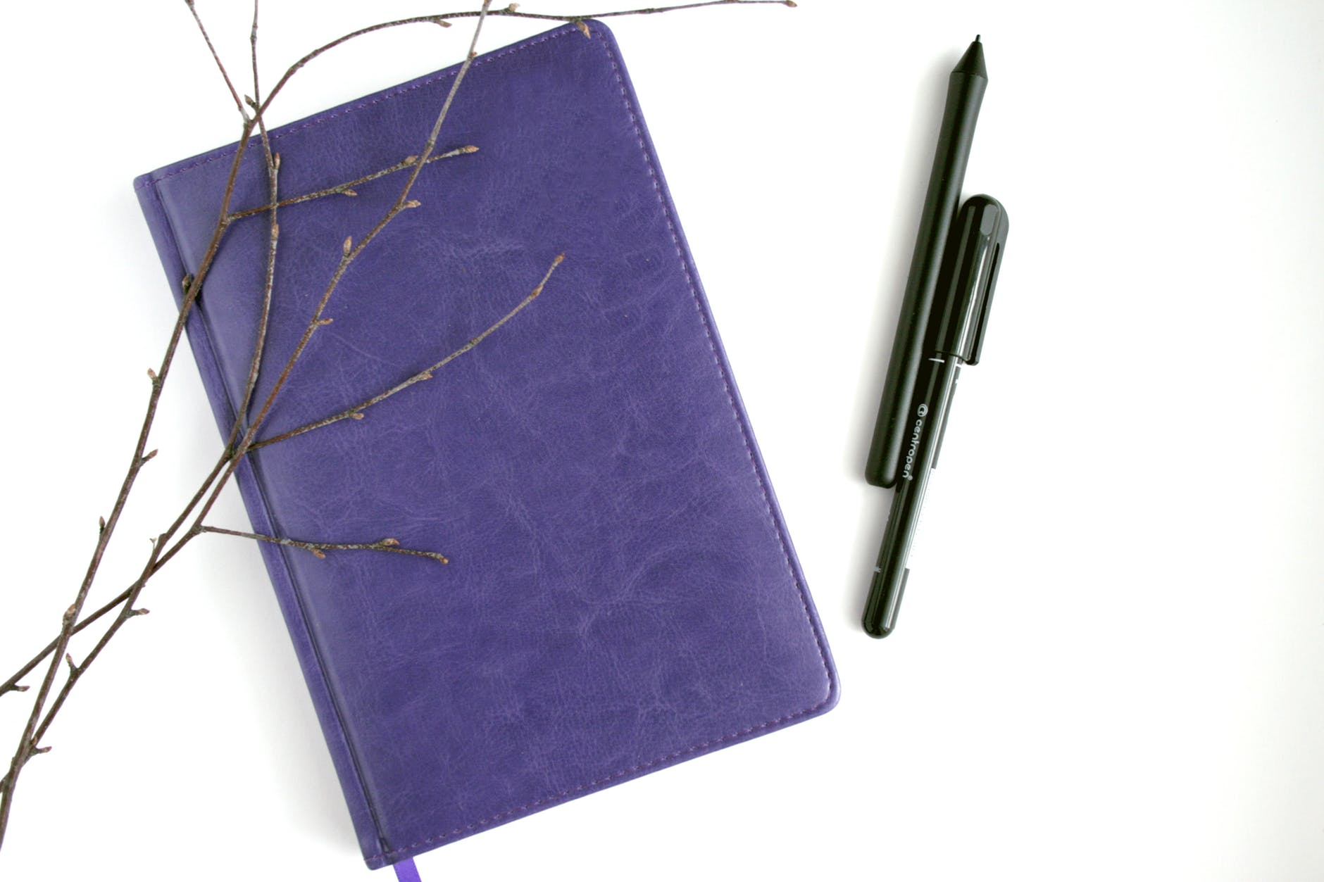 purple leather notebook black pen and brown branches